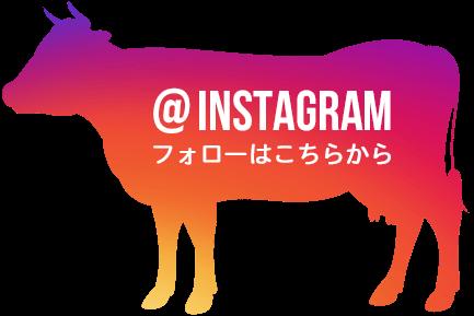instagram フォローはこちらから